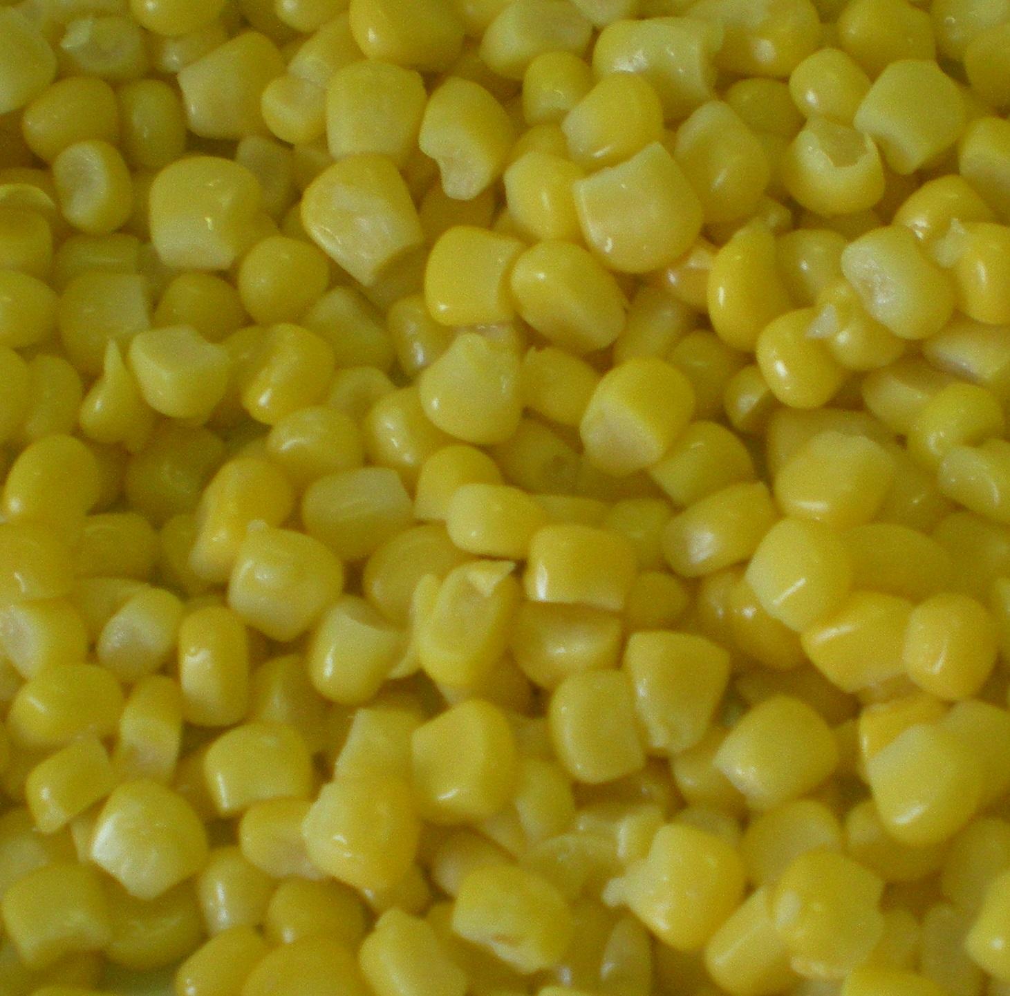 Wholesale frozen corn kernels - Garden Fresh by Kühne & Heitz
