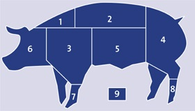 Pork meat cuts knh