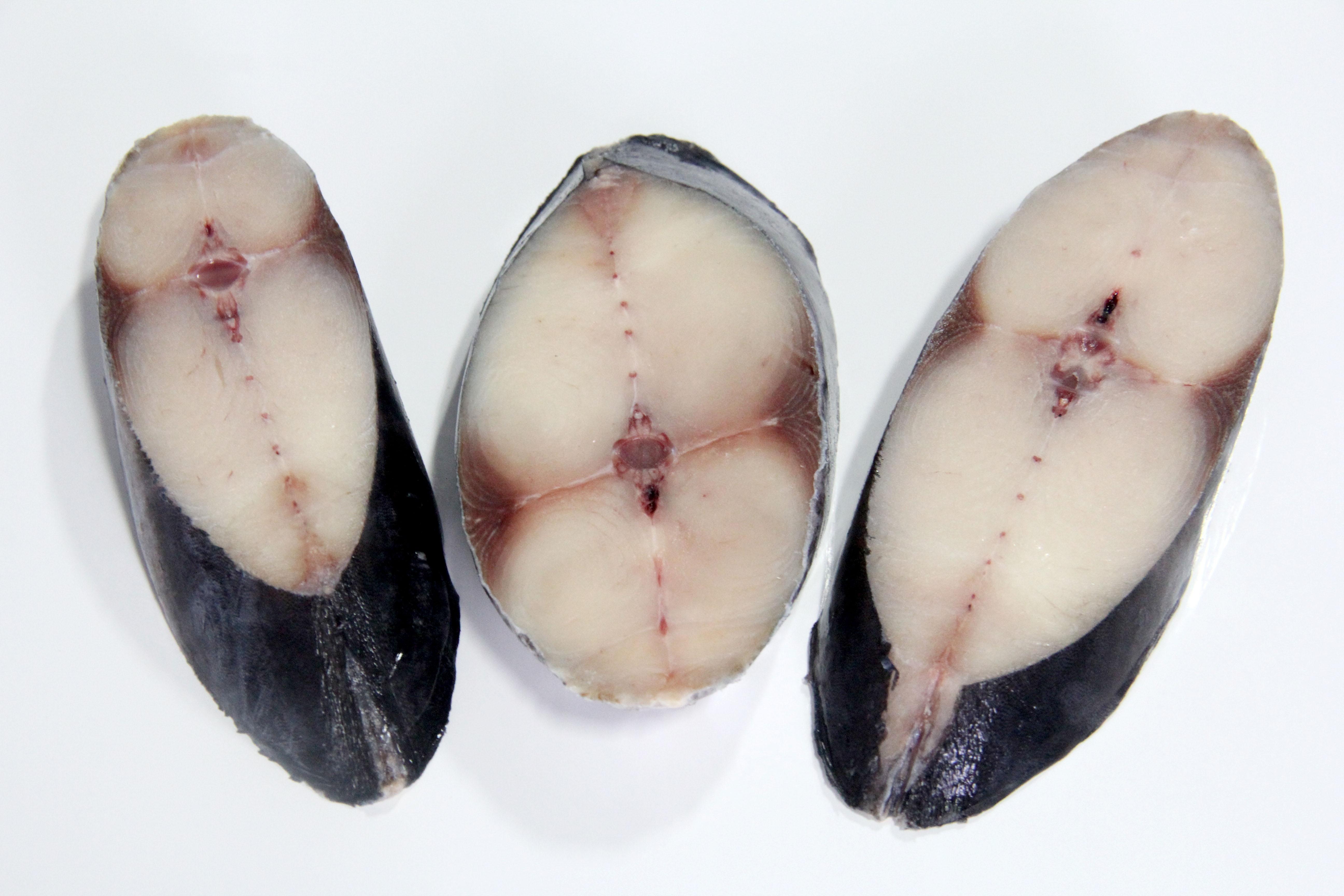 Wholesale frozen Catfish Steaks